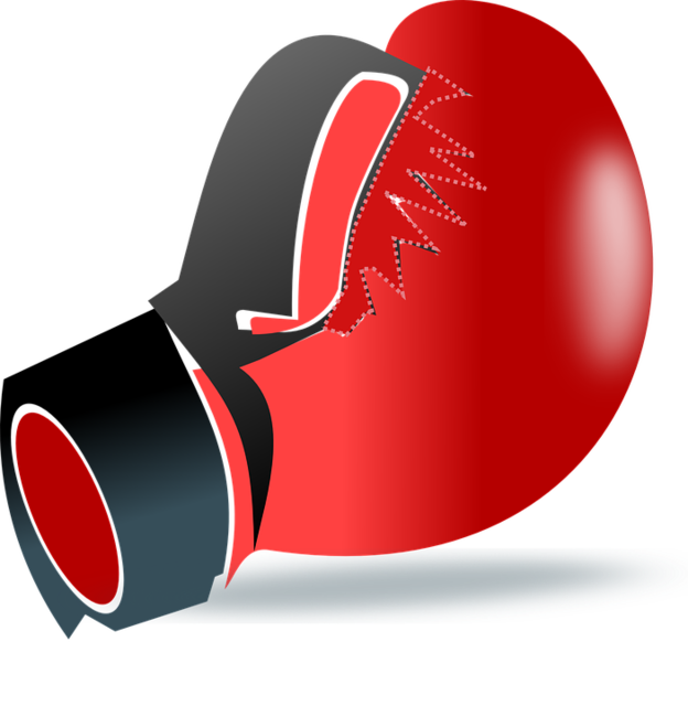 punch-159753_960_720.png
